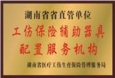 佳满假肢——湖南省省直管单位工伤保险辅助器具配置服务机构