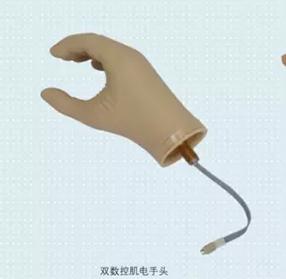 8K50 基础型肌电手